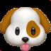 <span>DOG</span>
